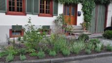 Ein Garten für das Dorf (1)