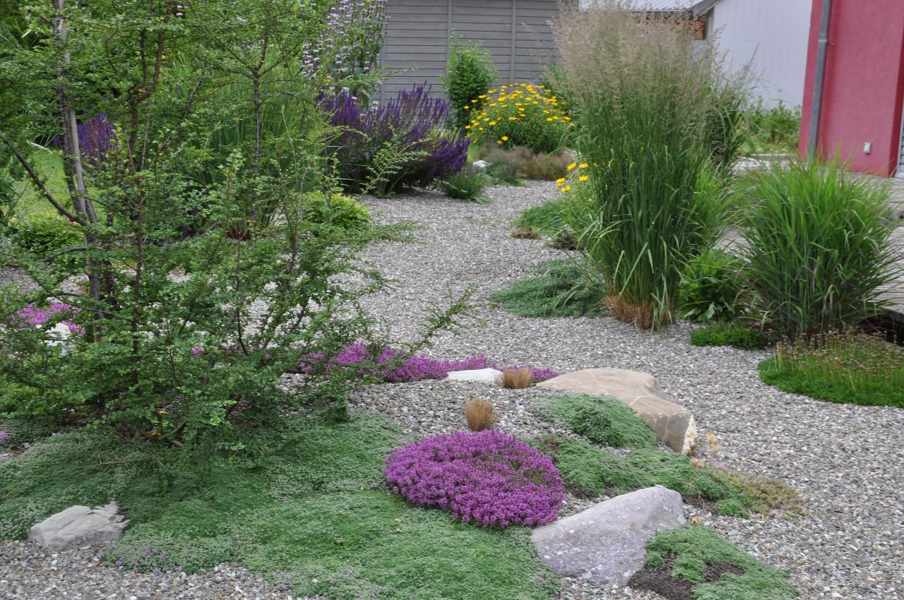 Kiesgarten garten und freiraum regine ege und harald for Raum pflanzen
