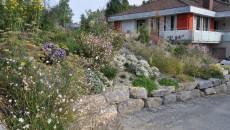 Mediterraner Hanggarten